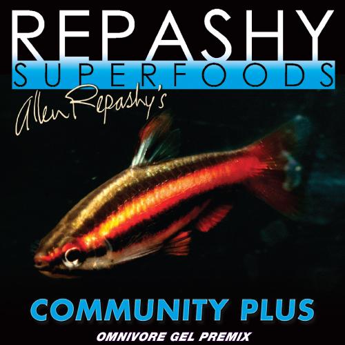 Community Plus