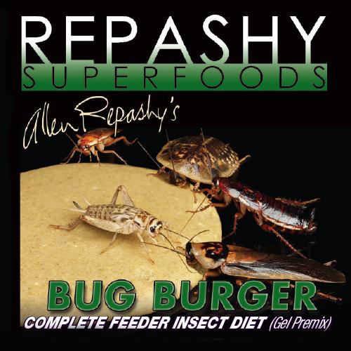Bug Burger