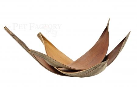 Kokosblätter medium 20-40cm 3er Pack