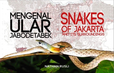 Snakes of Jakarta