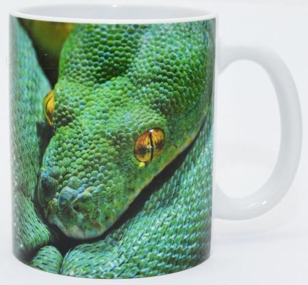 Kaffeebecher Morelia viridis 1