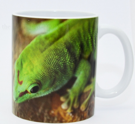 Kaffeebecher Phelsuma madagascariensis