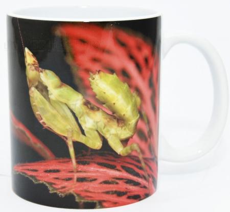Kaffeebecher Mantis