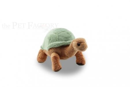Kuschel Landschildkröte grün