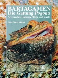 Bartagamen - Die Gattung Pogona