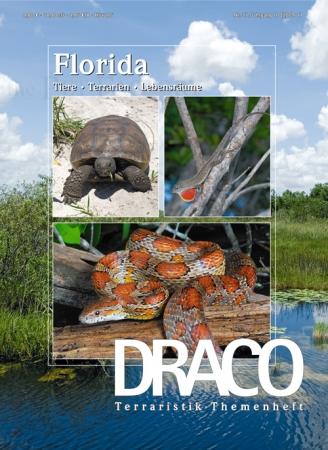 DRACO 37, Florida