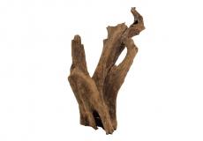Mangrovenwurzel ca. 20-30cm