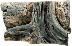Amazonas - 100 x 50 cm