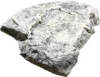 Modul F - White Limestone