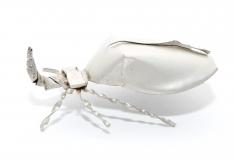 Blechinsekt Nashornkäfer Silber