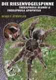 Riesenvogelspinnen (Theraphosa blondi & T. apophysis)