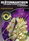 Blütenmantiden - Gattungen Pseudocreobotra & Creobroter