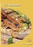 Grundwissen Skorpione