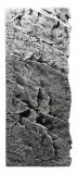 Slim-Line 60 C - 20 x 55 cm River (Basalt Grey)