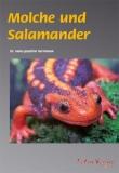 Molche und Salamander