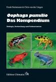 Oophaga pumilio - Das Kompendium