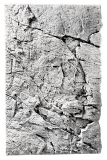 Slim-Line 80 A - 48 x 80 cm White Limestone