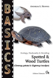 Spotted & Wood Turtles