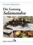 Die Gattung Salamandra - Geschichte, Biologie, Systematik, Zucht
