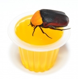 Beetle Jelly HP Melone 2.0 100er Pack