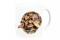 Kaffeebecher Boa constrictor 2