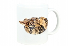 Kaffeebecher Boa constrictor 1