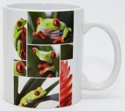 Kaffeebecher Agalychnis callidryas 2