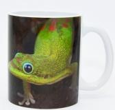 Kaffeebecher Phelsuma laticauda
