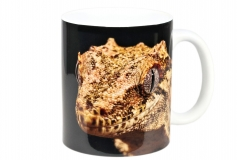 Kaffeebecher Correlophus auriculatus