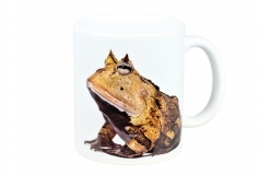 Kaffeebecher Ceratophrys cornuta