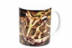 Kaffeebecher Ceratophrys cranwelli 1