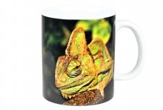Kaffeebecher Chamaeleo calyptratus 2