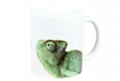 Kaffeebecher Chamaeleo calyptratus 4