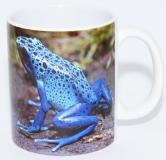 Kaffeebecher Dendrobates tinc. azureus