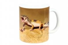 Kaffeebecher Eublepharis 2