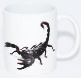 Kaffeebecher Heterometrus 2