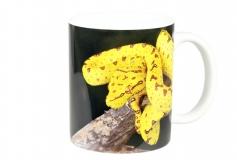 Kaffeebecher Morelia viridis 3