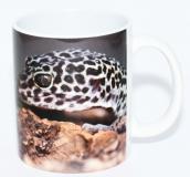 Kaffeebecher Eublepharis 1