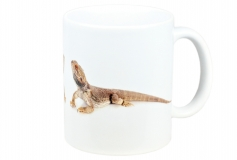 Kaffeebecher Pogona vitticeps 2