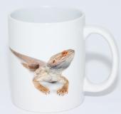 Kaffeebecher Pogona vitticeps 4