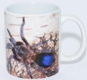 Kaffeebecher Sahydroaraneus raja