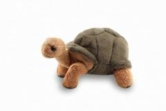 Kuschel Landschildkröte braun