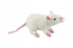 Kuschel Ratte weiss