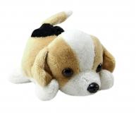 Kuschel Hund liegend