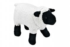 Kuschel Schaf