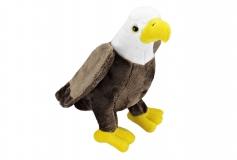 Kuschel Weisskopfseeadler