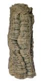 Liana tree trunk A 55x20cm