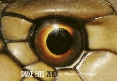 Kalender 2019 - Snake Eyes