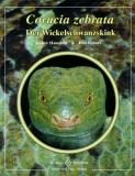 Corucia zebrata - Der Wickelschwanzskink