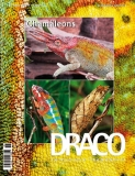 DRACO 58, Chamälons